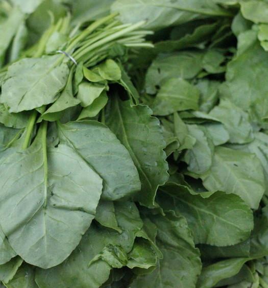 Leafy_vegitables