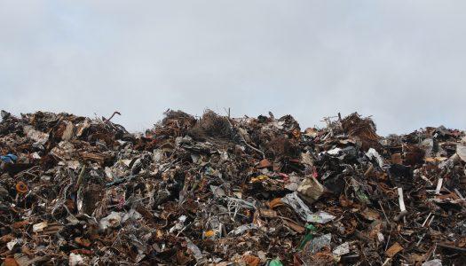 All the World's a Dump