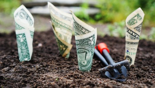 Ecological Debt and Responsibility