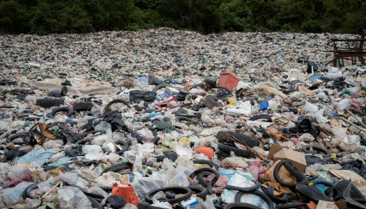 Living-Dying in a Global Dump